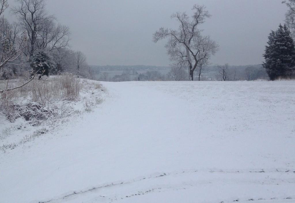 Java In Snow